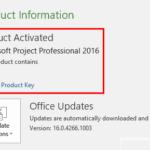 Microsoft Project Professional 2016 Product Key