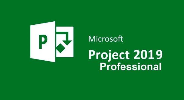 Microsoft Project Professional 2019 Product Key